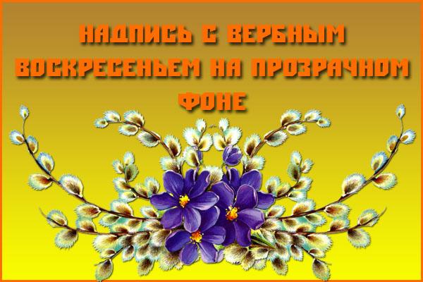 Надпись с вербным воскресеньем на прозрачном фоне
