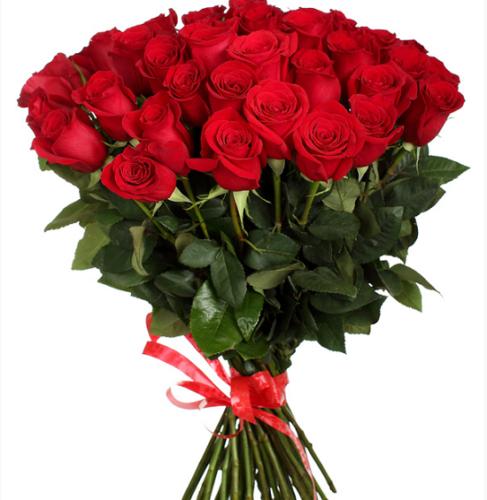 Букет бордовых роз на прозрачном фоне, новогодние букеты на заказ минск